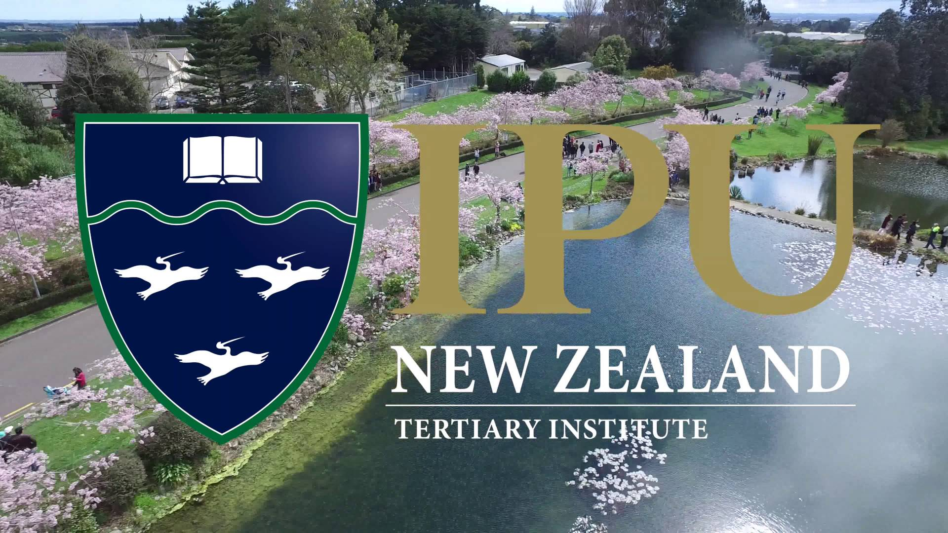 IPC Tertiary Institute